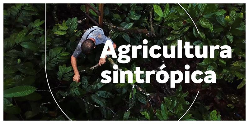 Ernst Götsch: Agricultura sintrópica (English subtitles)