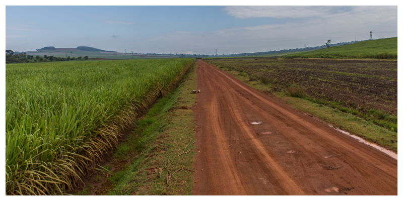 Slow Food Movement: Land Grabbing in Uganda – The Importance of Youth